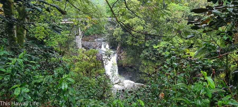 Waterfalls and bridges past Honolii