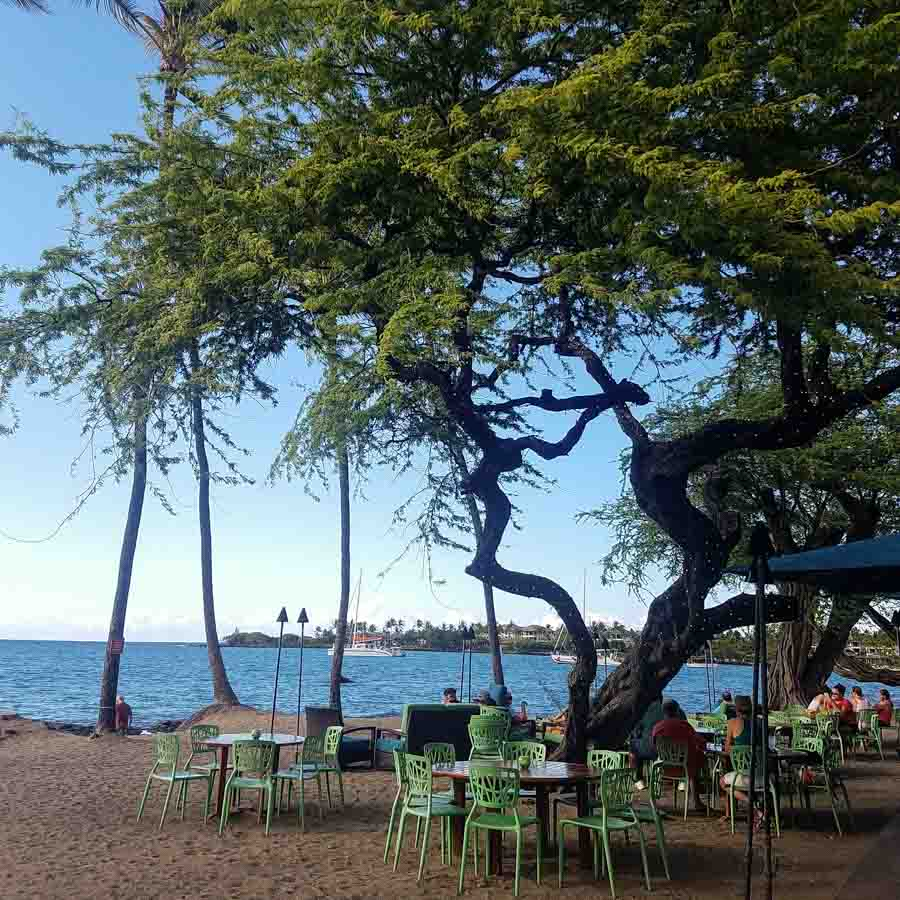 Conclusion of best things to do around Waikoloa Village