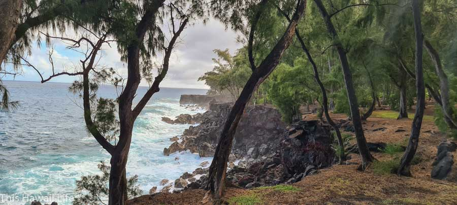 Visit the Puna District on the Big Island of Hawaii