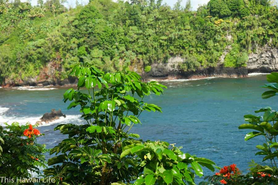 Onomeo Bay at Pepe'ekeo scenic drive