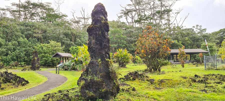 Explore Lava Tree State Park