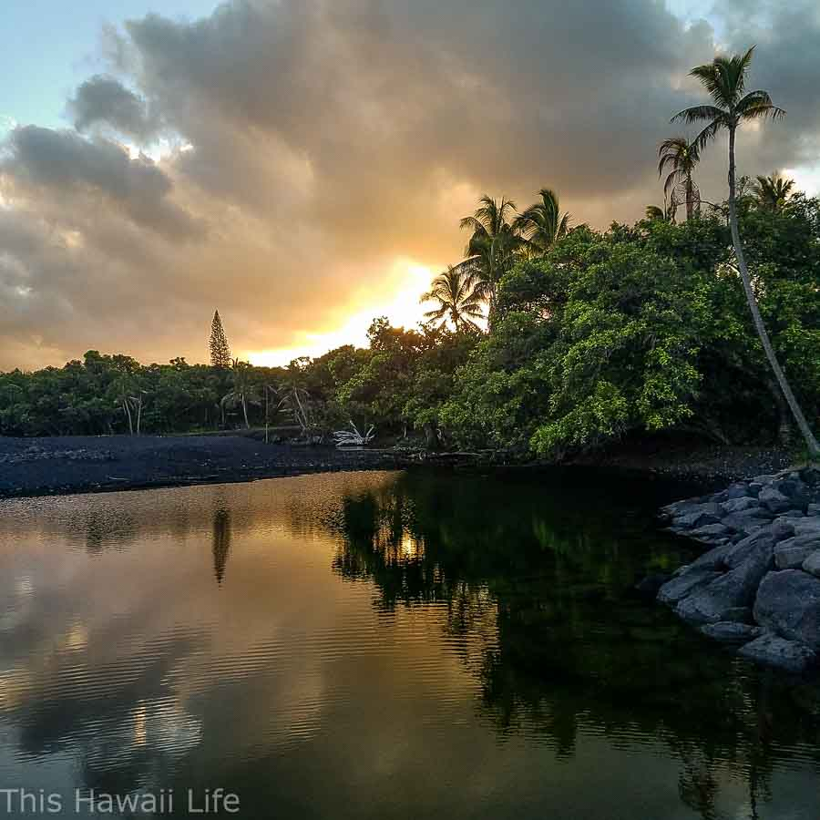 Visit to the new black sand beach at Pohoiki Beach (Isaac Hale Beach Park) and some cool hot ponds