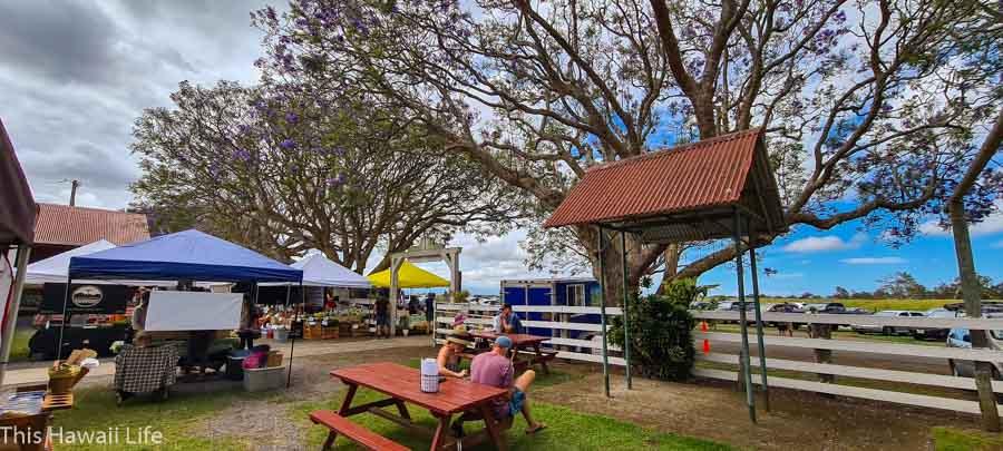Where Kamuela Farmers market located?