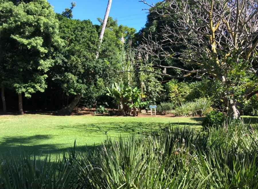 What else to see in Na'alehu area?