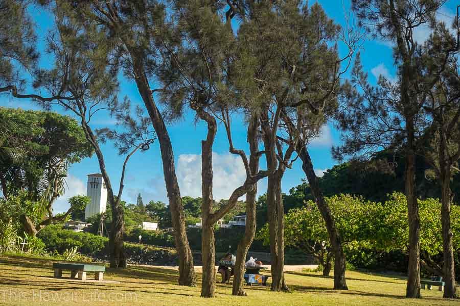 Nice picnic grounds and bbq pits at Waimea Bay