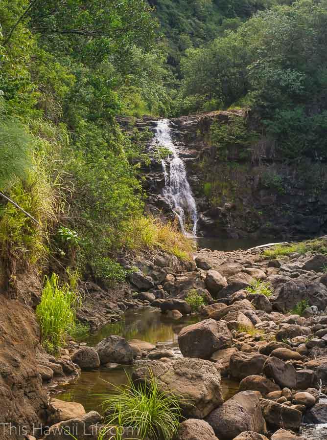 How far is the hike to Waimea Falls?