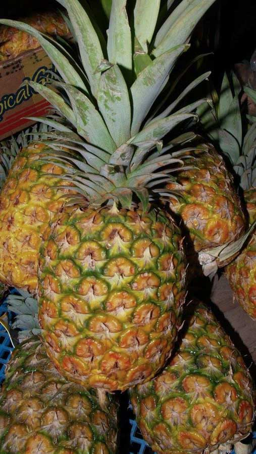 Health benefits to eating pineapples