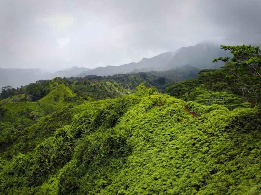 Hiking the Kuilau Ridge Trail