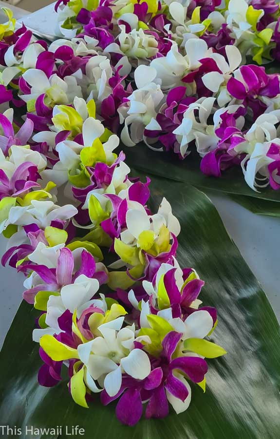 A little history and custom of lei giving