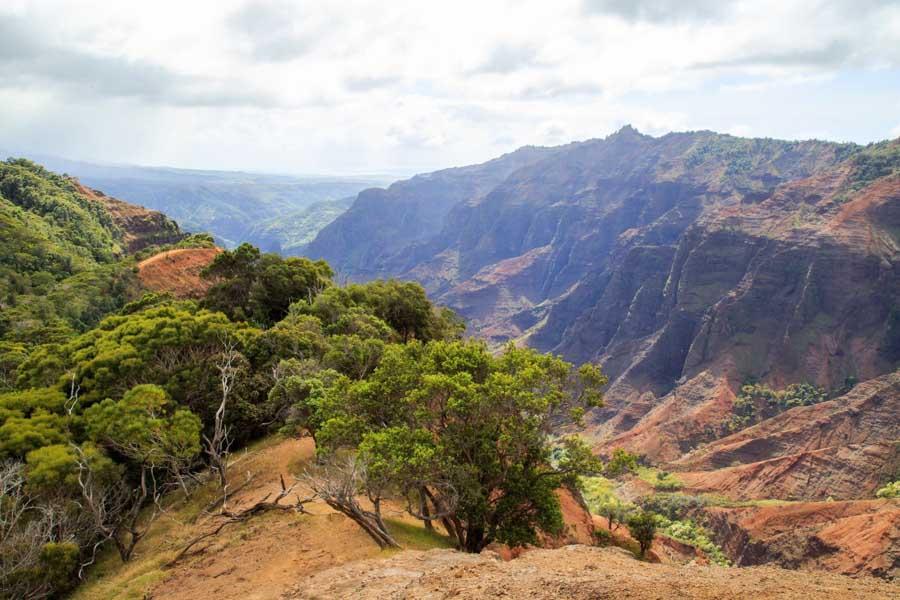 The Cliff Trail at Waimea Canyon