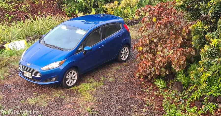 Save on Car Rentals