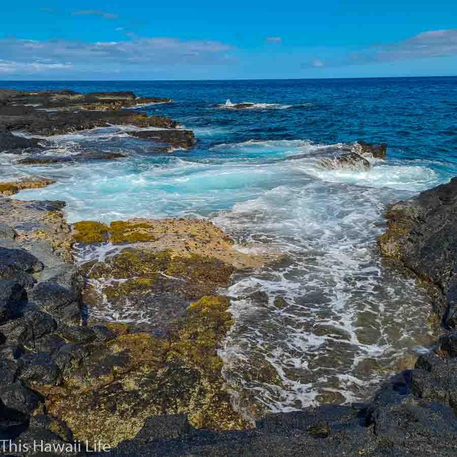 Shoreline views at Makako Bay