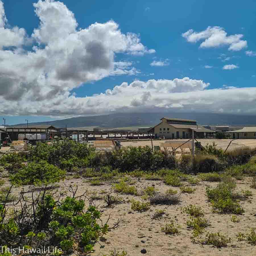 Sea Salt production facility at Keahole Point