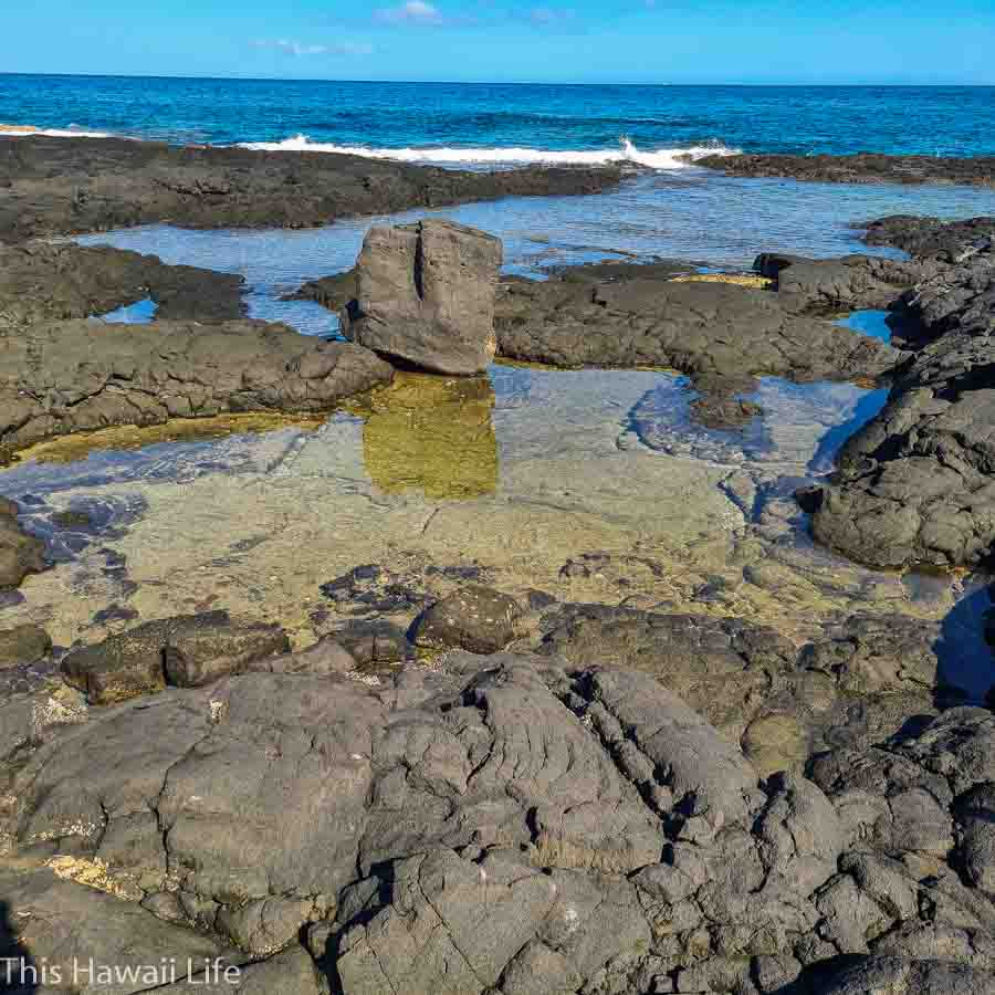 small tide pools at keahole point