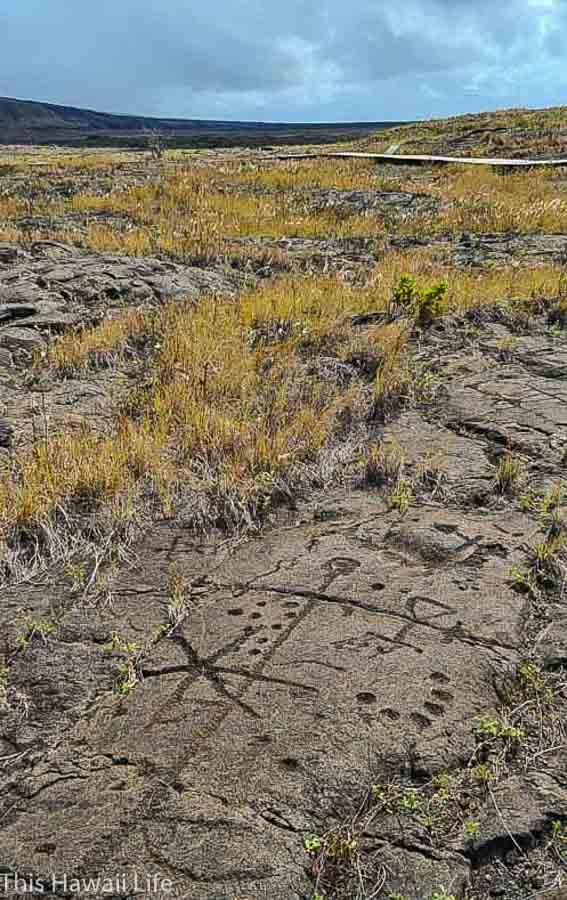 Visit to Pu'u Loa Petroglyphs at Volcanoes National Park