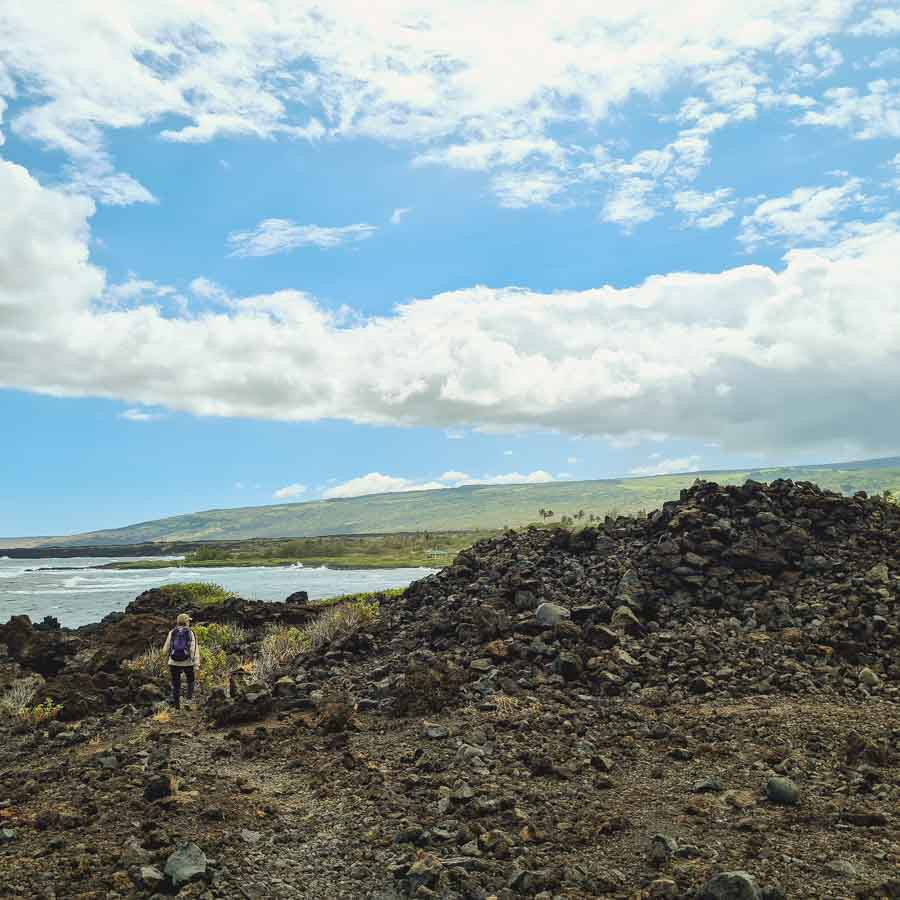 Have you hiked from Punalu'u to Kamehame Beach?
