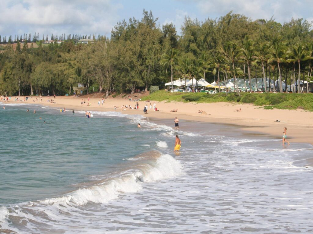 Best things to do in Kihei, Maui