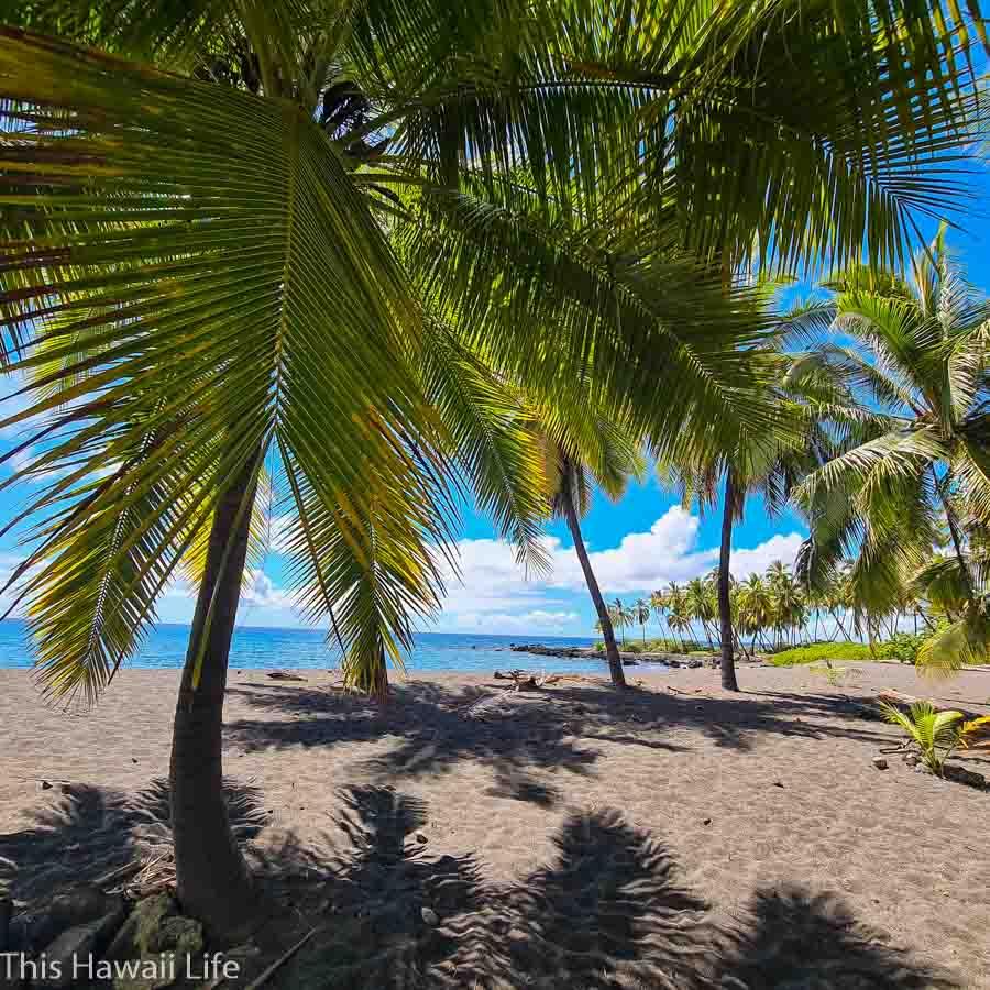 Conclusion to visiting Miloli'i and Honomalino Beach