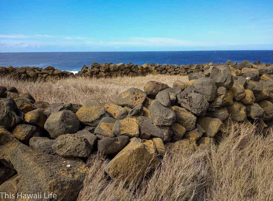 Explore around the large stone heiau called Kalalea