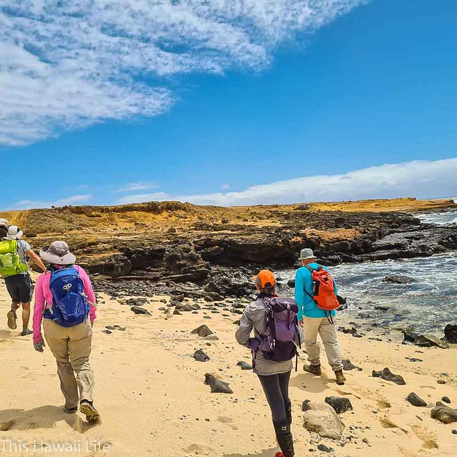 An easy green sand beach hike on the Big Island